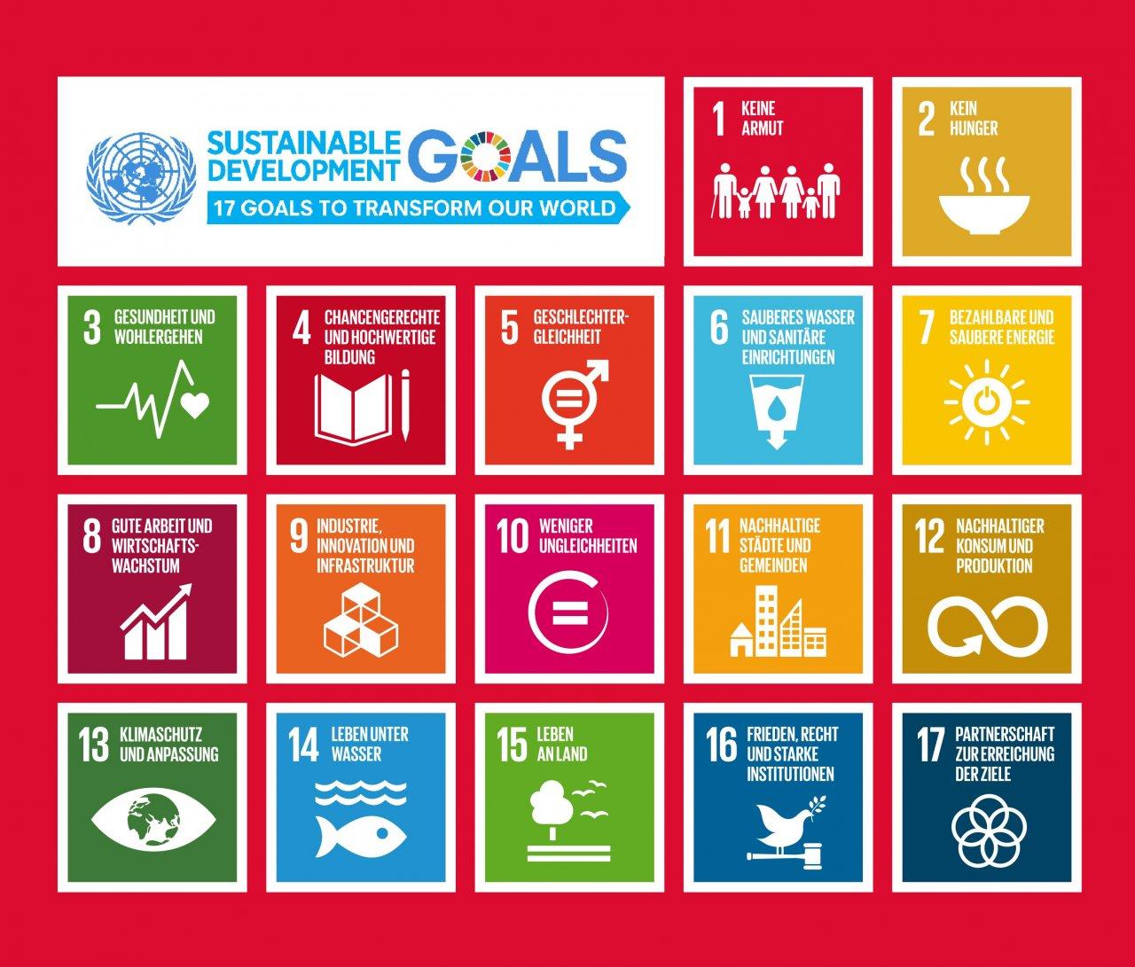Nachhaltigkeit Unternehmen SDGs
