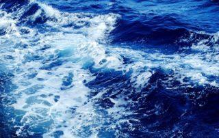 Meer ist ein CO2-Fresser