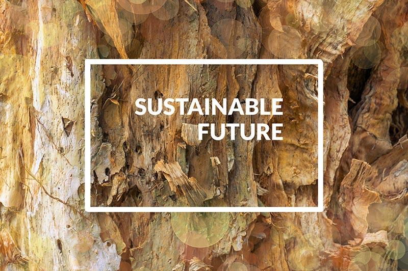 Nachhaltigkeitsberichterstattung - media4nature