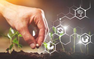 Nachhaltigkeit und Greenwashing